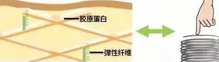 """灌水中心-  看到""""袁湘琴""""是否让你想到了植树?  对的,曾经一度在公众视线之中慢慢淡出  尤其是结婚之后(3)"""
