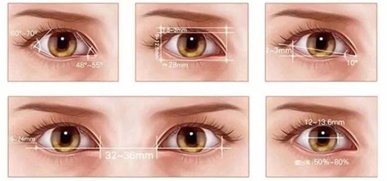 一双好看的眼睛会说话 甚至可以弥补其他五官的不完美